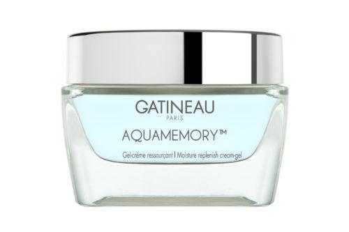 Aquamemory Gatineau